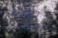 Кирпичная стена с предпосылкой завода Стоковое Изображение
