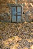 Кирпичная стена с старой дверью стоковое фото