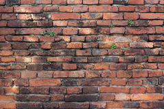 Кирпичная стена текстуры предпосылки старая винтажная Стоковые Фотографии RF