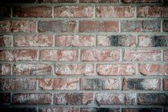 Кирпичная стена Grunge стоковые фотографии rf