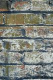 Кирпичная стена Grunge стоковое фото rf