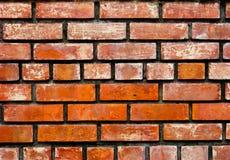 кирпичные стены Стоковые Изображения