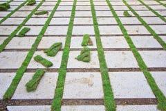 Кирпич и трава Стоковая Фотография