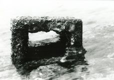 Кирпич моря Стоковая Фотография