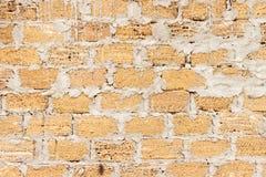 Кирпич от раковин текстурирует предпосылку, стену сделан кирпича раковин Стоковые Изображения