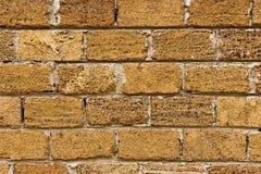 Кирпич от раковин текстурирует предпосылку, стену сделан кирпича раковин Стоковые Фото