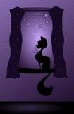Киска в окне Стоковая Фотография RF