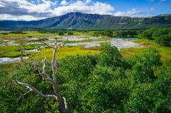 Кисловочное озеро в Uzon& x27; кальдера вулкана s Камчатка, Россия Стоковое фото RF