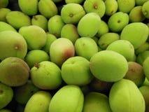 Кислые абрикосы Стоковые Изображения