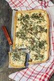 Кисл-флан с грибами, травами и сыром стоковое фото