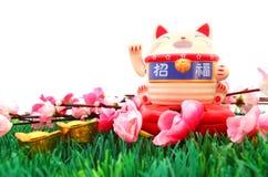 Китайская восточная удачливая диаграмма кота Стоковое Изображение