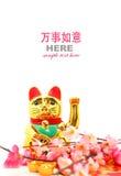 Китайская восточная удачливая диаграмма кота Стоковые Фотографии RF