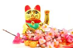Китайская восточная удачливая диаграмма кота Стоковые Изображения RF