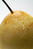 китайская груша nashi крупного плана Стоковая Фотография RF