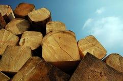 китайская древесина Стоковая Фотография