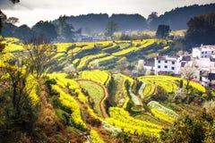 Китайская деревня Стоковое Изображение