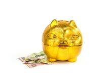 Китайская золотая копилка свиньи с тайскими деньгами на поле Стоковые Фотографии RF