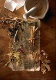 китайская микстура травы стоковые фотографии rf