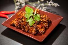 Китайская очень вкусная еда Стоковая Фотография RF