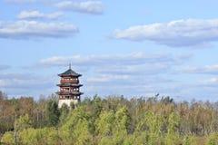 Китайская пагода окруженная зелеными деревьями, Чанчунь, Китай Стоковые Фотографии RF