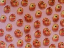 Китайская плоская картина персика Стоковая Фотография RF
