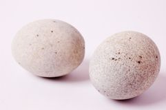 китайская сохраненная еда яичка Стоковое фото RF
