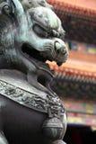 Китайская статуя льва - близкое поднимающее вверх Стоковое Изображение