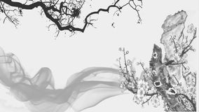 Китайская традиционная картина чернил и цветка акции видеоматериалы