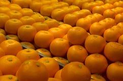 Китайские апельсины мандарина Нового Года Стоковое Фото
