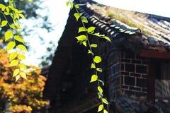 Китайские дома жилища местный-стиля стоковое изображение rf