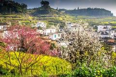 китайские деревня и цветки Стоковое Фото