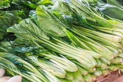 Китайские капусты Стоковое Фото