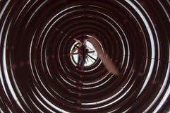 Китайские катушки ладана стоковая фотография