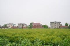 Китайские дома в деревне и сельскохозяйственное угодье Стоковая Фотография RF