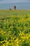 Китайские пастухи казаха с лошадью Стоковое фото RF