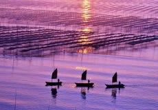Китайские прибрежные взгляды стоковая фотография rf
