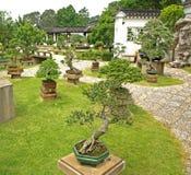 китайские сады Стоковые Фото