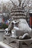 Китайские львы попечителя Стоковое фото RF