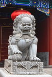 Китайские львы попечителя Стоковые Изображения RF