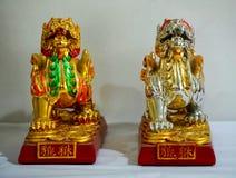 Китайские львы попечителя стоковые фото