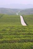 китайский ландшафт стоковые изображения rf