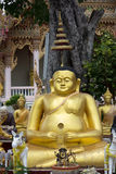 Китайский буддийский монах стоковое фото rf