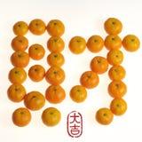 китайский год нового сериала Стоковое Изображение RF