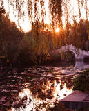 китайский заход солнца сада Стоковые Изображения RF