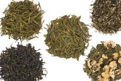 китайский зеленый чай Стоковые Фото