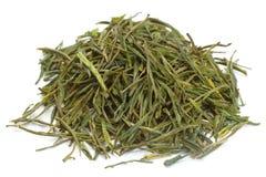 китайский зеленый чай Стоковое Изображение RF