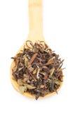 Китайский зеленый чай стоковые изображения rf