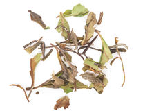 Китайский зеленый чай стоковое фото rf