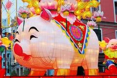 китайский зодиак года свиньи Стоковое Изображение