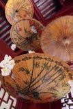 Китайский зонтик стоковое изображение
